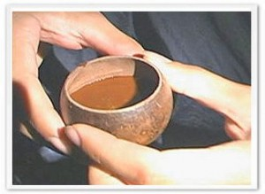 The finished ayahuasca drink