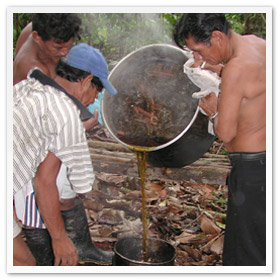 Pouring off the ayahuasca
